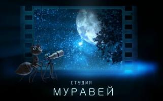 Студия Муравей
